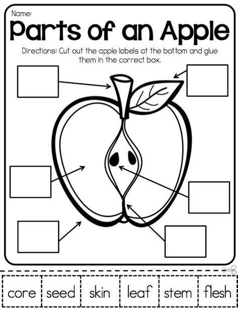 Apples Lap Book (kindergarten)  By Coriann