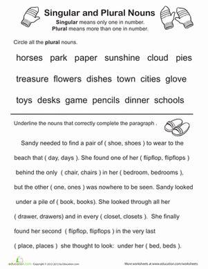 great grammar singular and plural nouns homeschooling