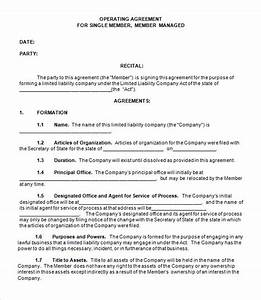 Llc operating agreement 8 download free documents in pdf word for Free operating agreement for single member llc