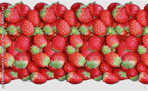 not angka first love object arrays stereogram gallery strawberry stereogram images games video and software