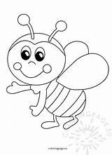 Bee Funny Cartoon Coloring Bees sketch template