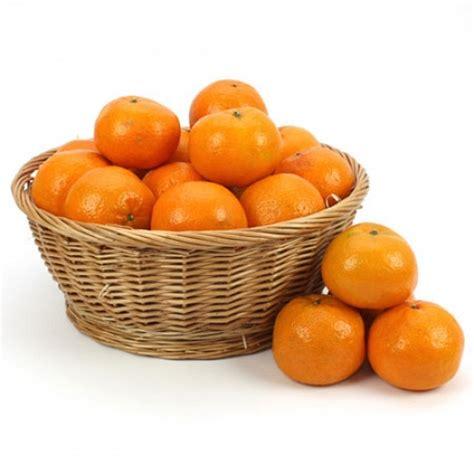 pohon jeruk orange fruit basket delivery to uk united kingdom
