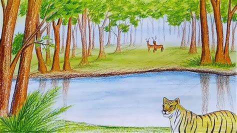 draw scenery  forest sundarban step  step