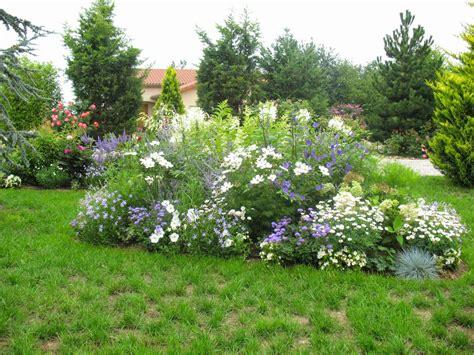 roses du jardin ch 234 neland fleurs bleues estivales