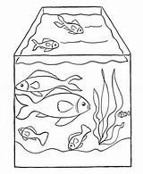 Fish Tank Coloring Drawing Pet Aquarium Pages Nemo Drawings Netart Paintingvalley Getdrawings sketch template
