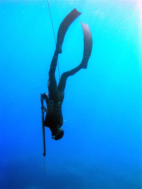 opinions on freediving
