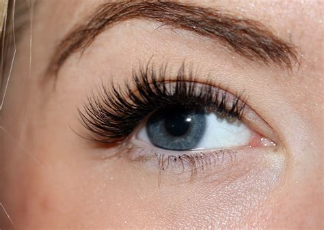 Eye Lash images for gt eyelash extensions eye lash extension ex