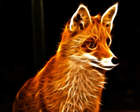 3d Wallpaper Animals by Fox Wallpapers Wallpapers High Quality Free
