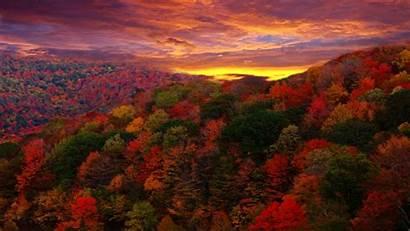 Fall Forest Theme Desktop Foliage Autumn Landscape