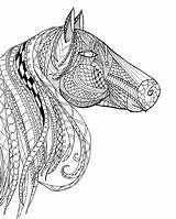 Coloring Horse Pages Adults Head Adult Zentangle Printable Advanced Detailed Paint Intricate Horses Books Sheets Etsy Animal Bestcoloringpagesforkids Template Printables sketch template