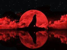 Alpha Wolf Blood Moon Wolf Wallpaper by Cries Of The Sun Moon Lua