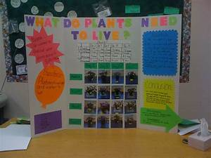 Science Fair Projects For 5th Grade Volcanoes
