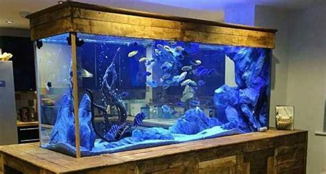 akuarium air laut hewanid
