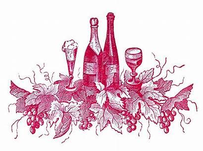 Wine Clip Label Port Clipart Labels Fairy