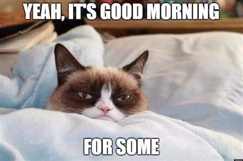 Grumpy Cat Good Morning Meme - funny good morning meme cute and beautiful pictures for him her