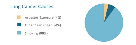 asbestos lung cancer  diagnosis treatment