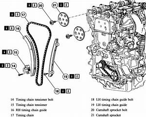 Wiring Diagram Database  2001 Ford Focus Timing Belt