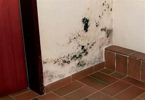 Schimmel An Der Wand Entfernen : wie entferne ich schimmel wie bekomme ich den schimmel ~ Michelbontemps.com Haus und Dekorationen