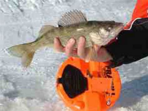 ice fishing  tip   questions answered muskego