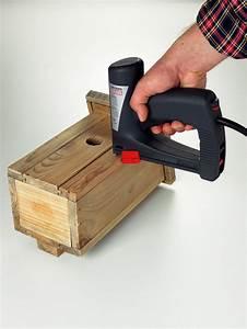 Tacker Für Holz : bosch akku tacker ptk 3 6 li ~ Lizthompson.info Haus und Dekorationen