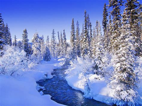 Background Images Snow by Wallpapers Snow Wallpapers
