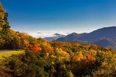 Fall Foliage 2017 Forecast And Guide Blue Ridge Mountain