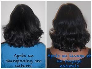 Lavage A Sec : no poo mes 3 premiers mois sans shampooing ~ Melissatoandfro.com Idées de Décoration