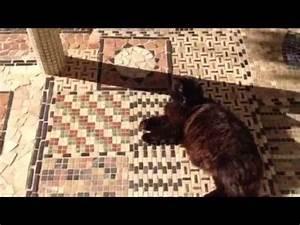Terrasse En Mosaique : tapis terrasse mosa que carrelage par made in mosaic youtube ~ Zukunftsfamilie.com Idées de Décoration