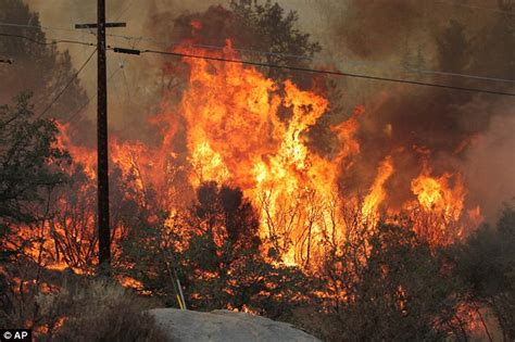 Nine dead in California wildfires