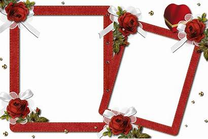 Transparent Frame Frames Double Roses Romantic Molduras