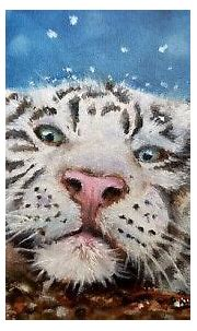 New White Tiger Cat wildlife winter Photo   Winter photo ...
