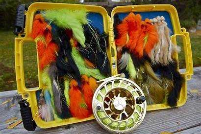 Streamers Trout Patterns Flies Fly Bass Fisher