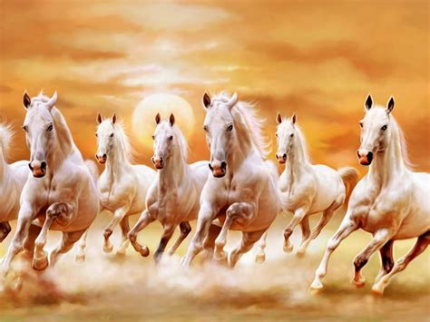 7 Horse Hd Wallpapers  Horses Wallpapers And Backgrounds