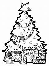 Coloring Tree Printable Everfreecoloring sketch template