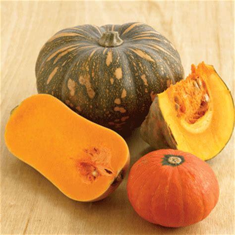 types of pumpkins superfood winter squash or pumpkin nutrition8020