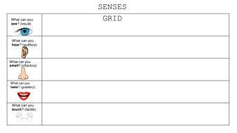 senses worksheets ks1 livinghealthybulletin