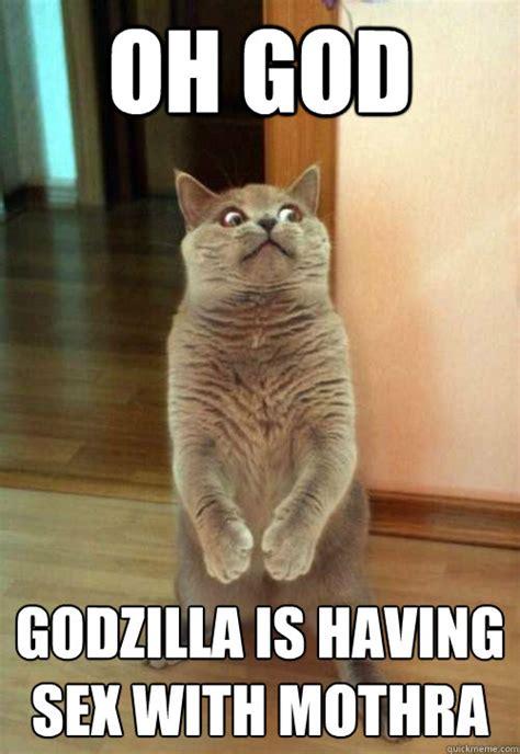 Sexy Cat Memes - oh god godzilla cat meme cat planet cat planet