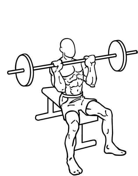 press shoulder military fitness oefeningen schouders barbell militar seated bilanciere wikipedia seduti gym