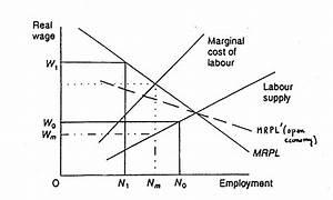 A Monopsonistic Labour Market