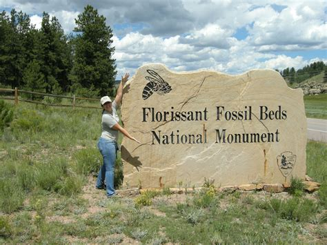 what was the paleoclimate of florissant fossil beds