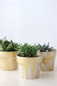 Pots à épices : gilded succulent pots ~ Teatrodelosmanantiales.com Idées de Décoration