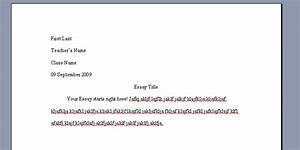 lms essay writing assistance