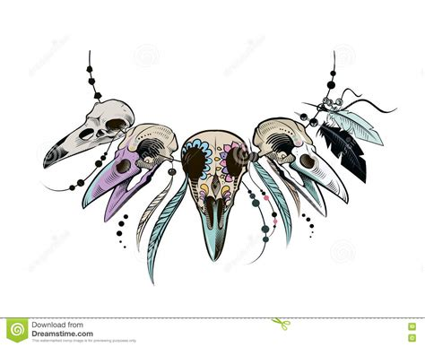 Vulture Skull Royalty-free Stock Photography