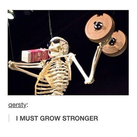 Skeleton Meme 40 Best The Skeleton War Images On Skeletons