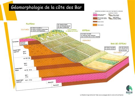 chambre agriculture aube the grand cru worthy terroir of the aube missinwine