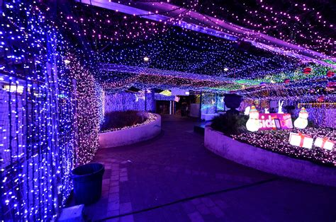 australian display of 1 2 million christmas lights sets