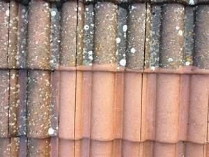 Nettoyer Terrasse Carrelage Eau De Javel : demoussage toiture ~ Melissatoandfro.com Idées de Décoration