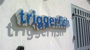 cut out letter and wall signs in cape town afrisign With cut out letters signage