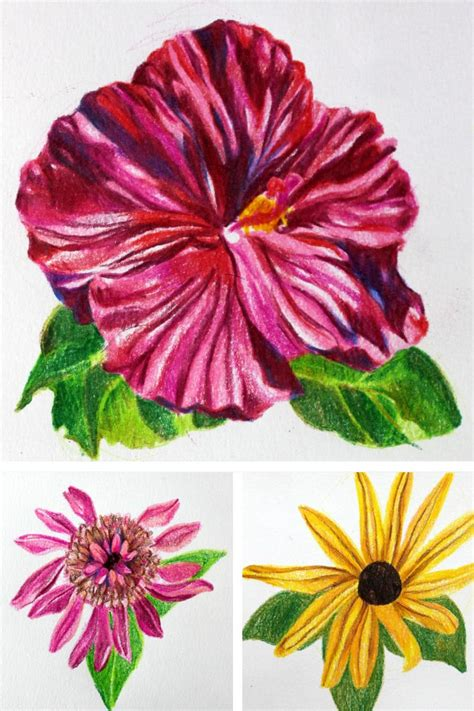 Coloring Flowers With Colored Pencils by You Re Just 5 Steps Away From A Gorgeous Colored Pencil