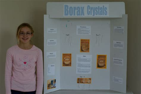 Sugar Crystals Science Fair Project Wwwimgkidcom The